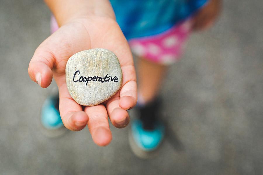 dziecko pokazuje dłoń, w której trzyma kamyk z napisem cooperative