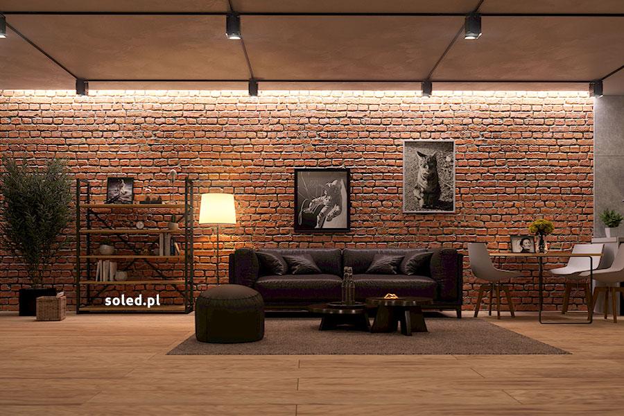 oświetlenie białe ciepłe na suficie podwieszanym w nowoczesnym salonie w stylu industrialnym, światło pada na ścianę z cegły, na wprost stoi kanapa czarna wraz ze stolikiem, z lewej strony wypoczynku znajduje się lampa stojąca oraz metalowo-drewniany regał, zaś z prawej strony widza widzimy stolik z białymi krzesłami, na ścianie wiszą obrazy kota oraz kosmonauty