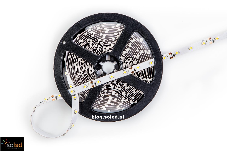 Taśma LED jednokolorowa
