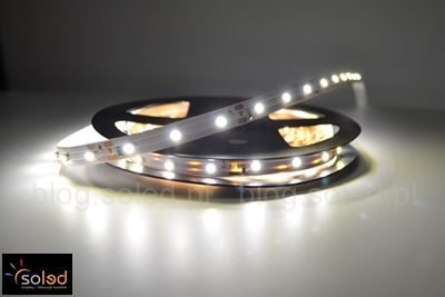 Taśmy LED jednokolorowe